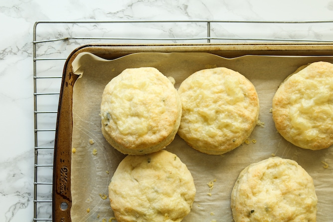 Cheddar-Thyme Biscuits | cookinginmygenes.com