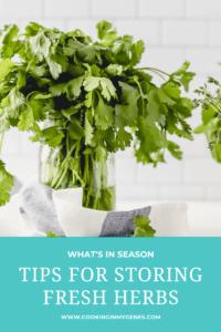 Tips for Storing Fresh Herbs